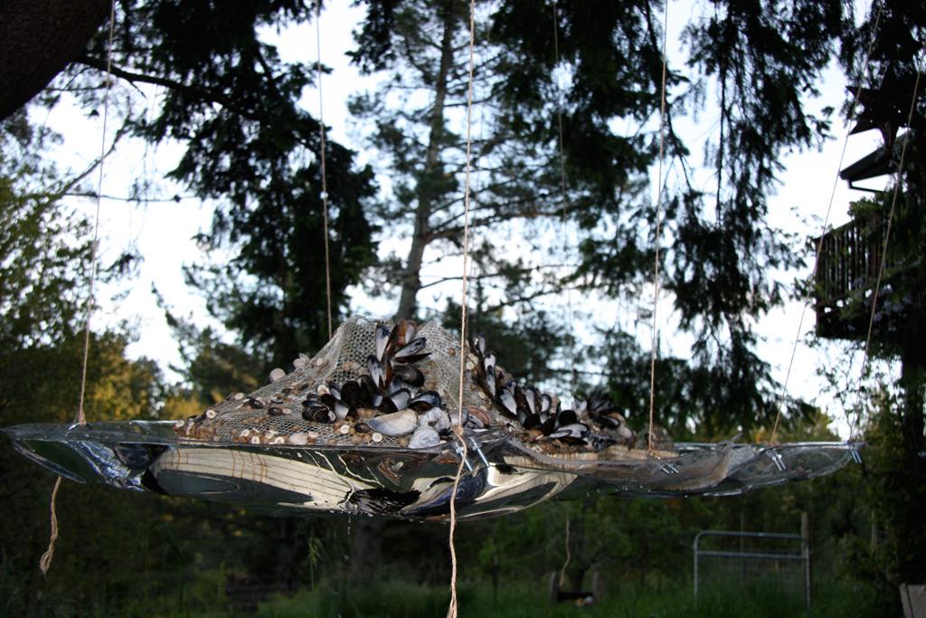 Island of Trash