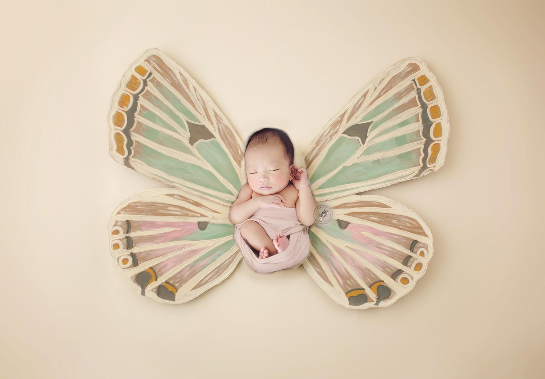 Butterfly2 copy