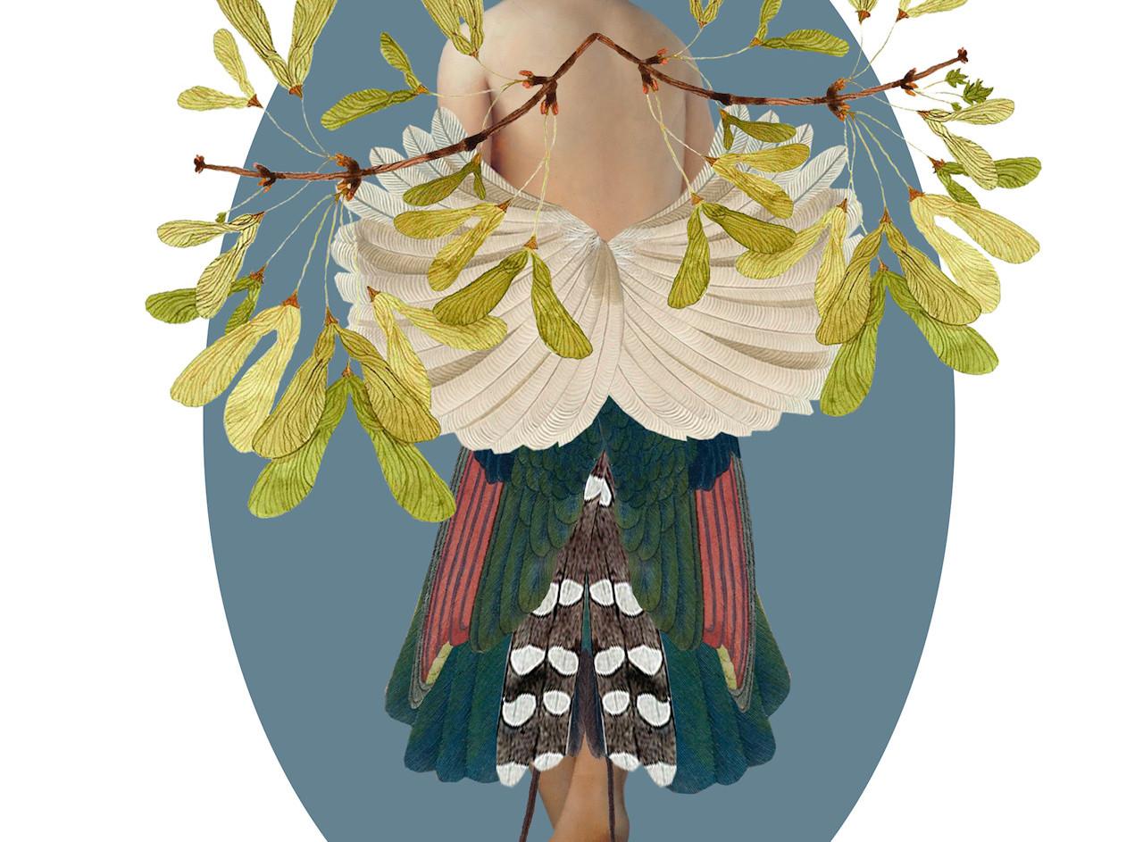 La metamorfosis del pájaro