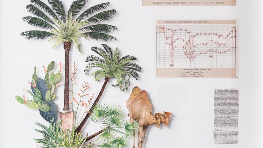Espejismo de George Perkins Marsh o anacronismo de una tierra fatigada