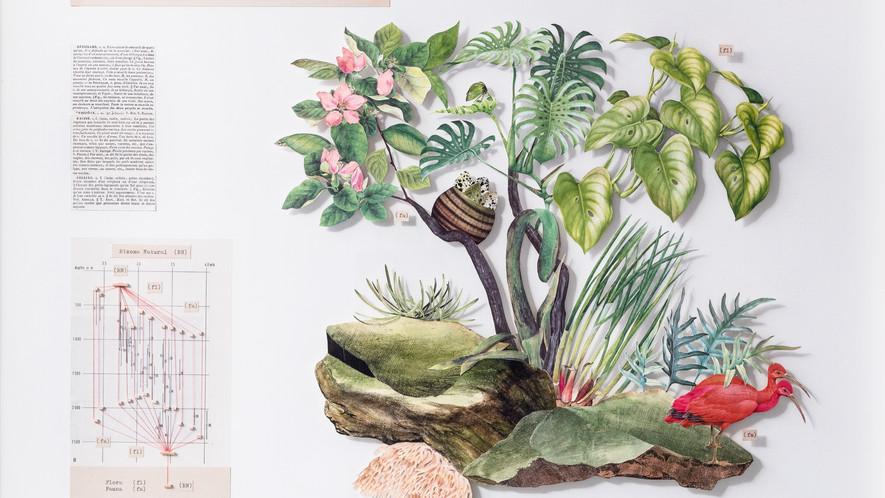 El despertar del Rizoma en las células grises de Alexander von Humboldt