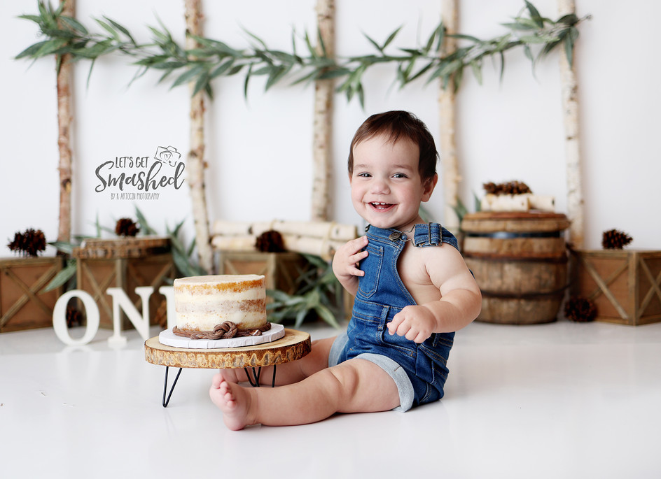 South Jersey Cake smash photographer; woodsy neutral theme, boy theme, rustic, simple, 1st birthday