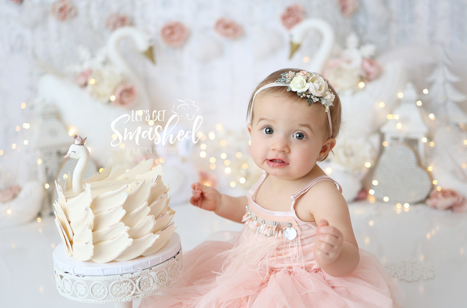 South Jersey Cake Smash photographer, Swan theme, girl , floral theme, pink and white