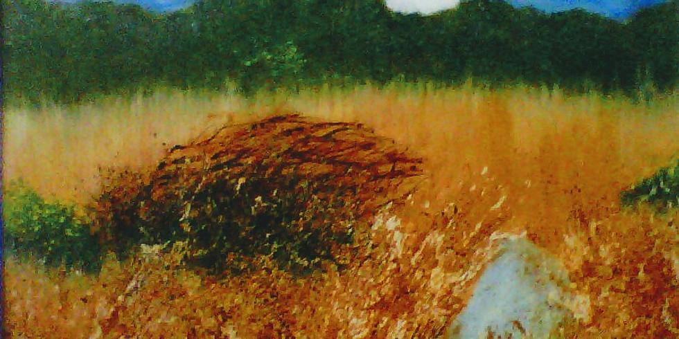 Exhibition - Carol Parsons
