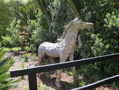 Teak Horse At The ccommodation