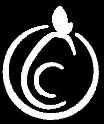 Logo-MT-2020-White.png