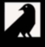 Blackbird SE DC