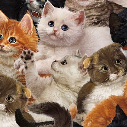 Literary Kitties Packed Kitties - Quilting Treasures Cat Fabric