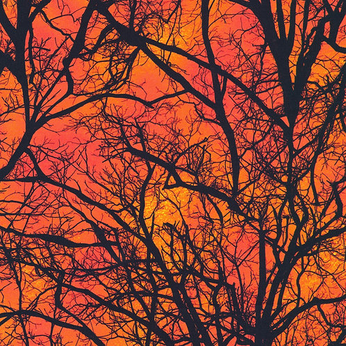 Pumpkin Raven Moon Trees Fabric