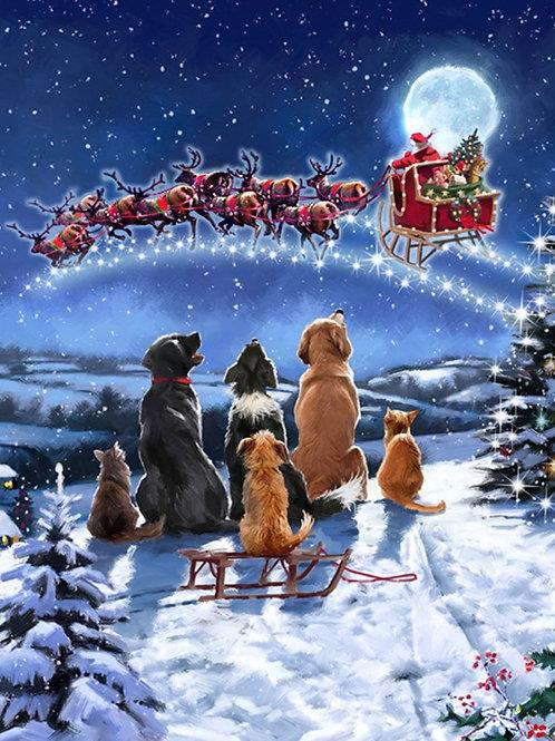 Midnight Meeting Christmas Panel