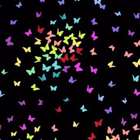 Makower Rainbow Sprinkles Butterflies Fabric - Black