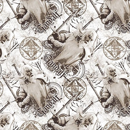 Lord of the Rings Gandalf Fabric