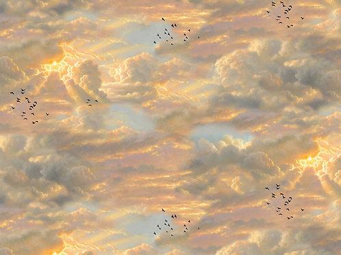 LP Noah's Sky Fabric