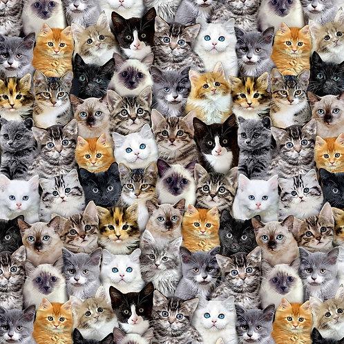 Multi Mixed Cat Breeds Fabric