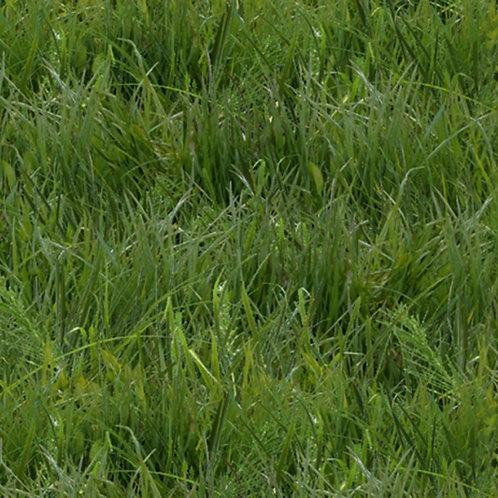 Green Grass Fabric
