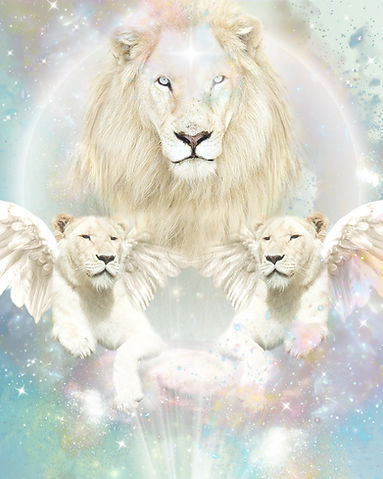 lions gate clean.jpg