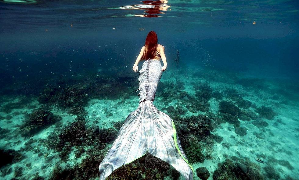 mermaid-swimming_1440.jpg