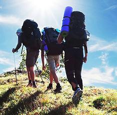 Walks and hikes in lake tekapo