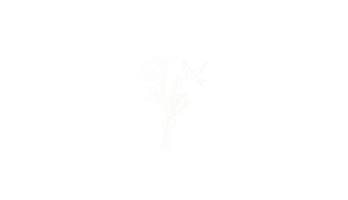 MB_Logo_2019_Cream_Thin.png