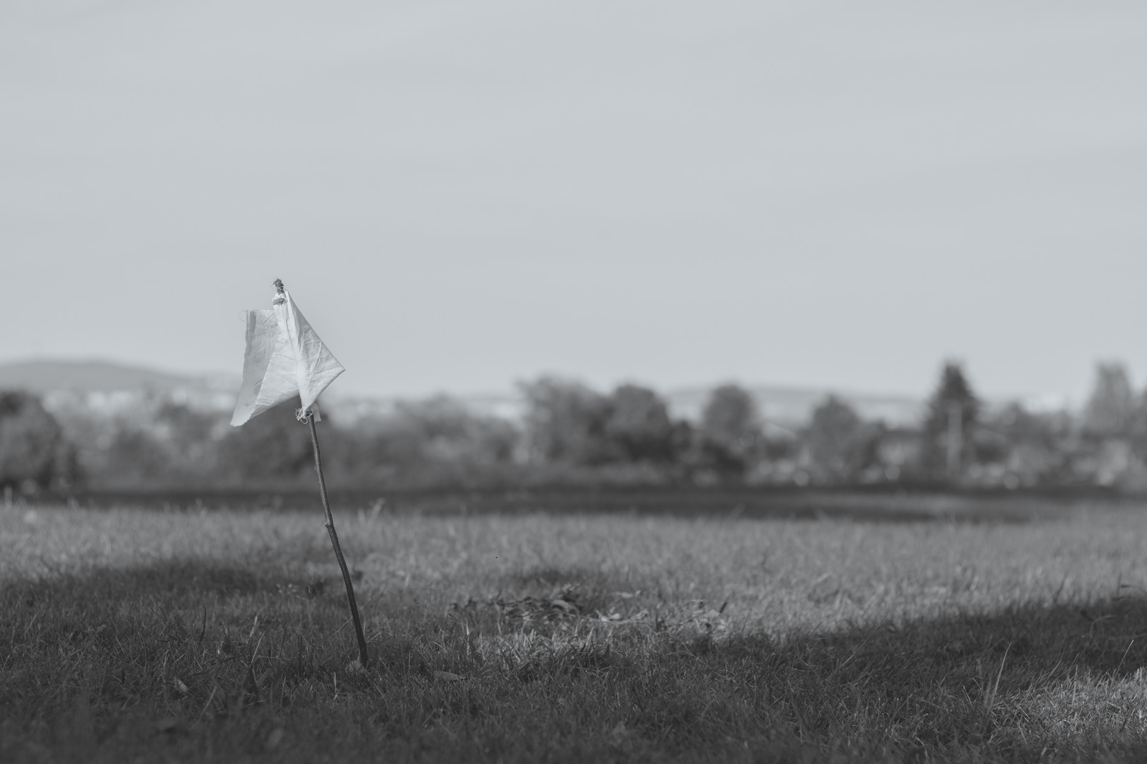 Lonely Flag BW.jpg