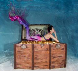 mermaid model_