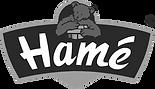 Hame-logo-592CFABE9C-seeklogo.com_uprave