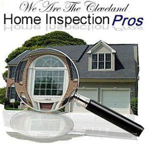 Professional Home Inspectors