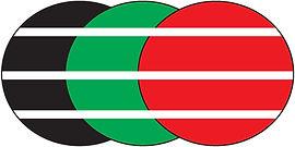 PEC_Plonsk_logo.jpg