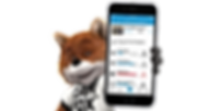 Car Fox holding phone