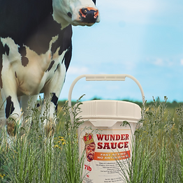 Wunder Sauce with Cow in Grass.png