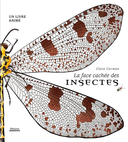 The Hidden Side of Insects