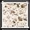 Thumbnail: Areia Regular