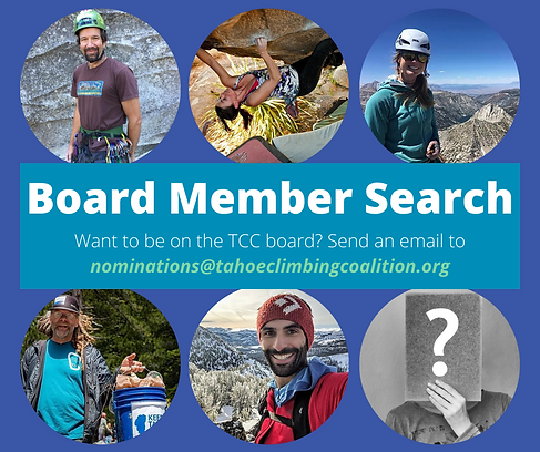 Board Member Search.png