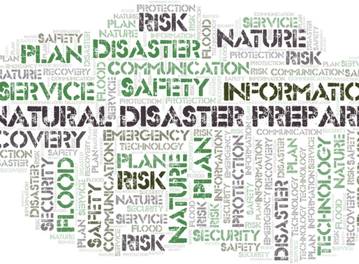 Natural Disaster Preparation and Your Business