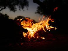 WTS_Birdsville_Free-Camping_web.jpg