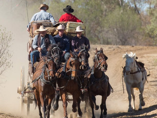 TOURS-outback-pioneers.jpg
