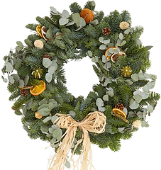 Citrus Wreath Test.png