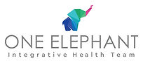 One Elephant Logo