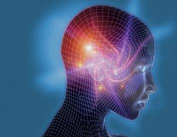 Cervello e processi quantistici della Mente