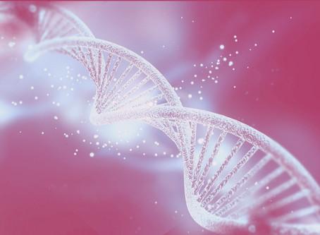 Pratiche Mente-corpo ed effetti sul DNA