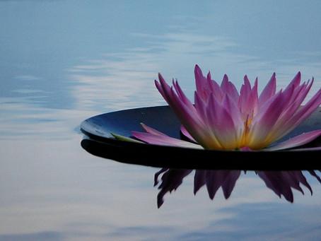 Meditation und Alltagsbewältigung