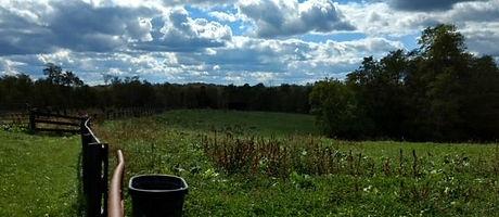 countryside farm