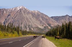 alaska-roadsys