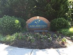 Mallard Run.webp