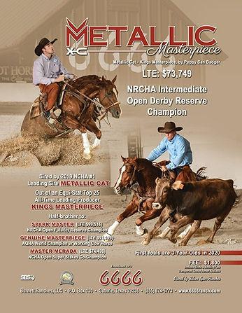 Metallic Masterpiece Ad.jpg