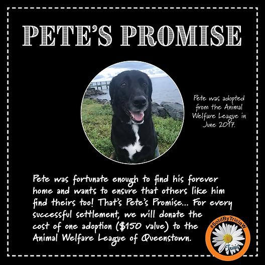 Pete'sPamphlet.png