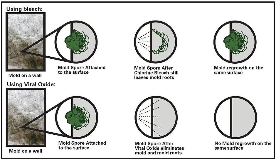 mold-mildew-odor-eliminator-vital-oxide_