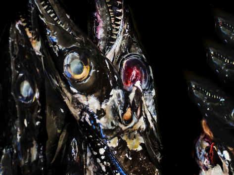 Madeira Scabbard Fish