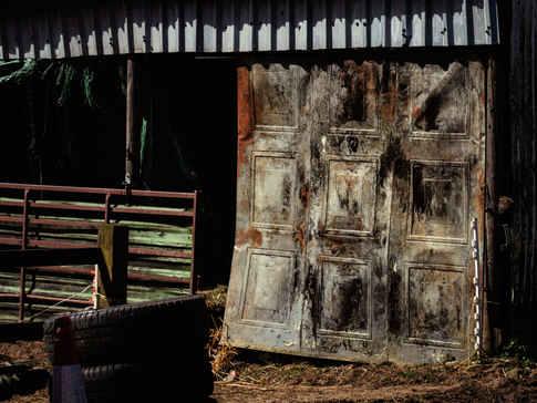 Barn Door, Dorset