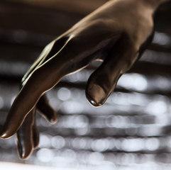 HAND IN DAPPLED LIGHT